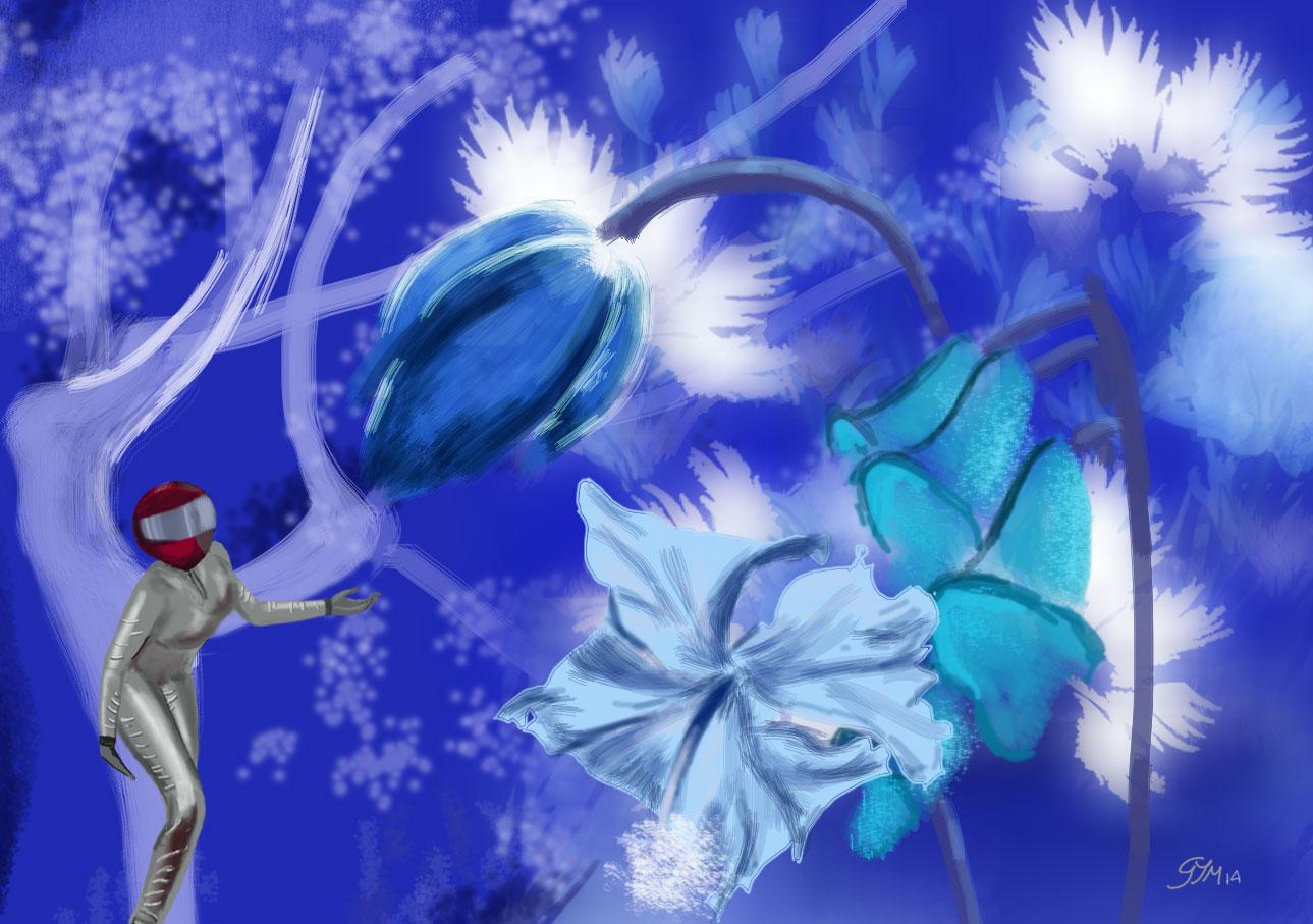 19-fleurs